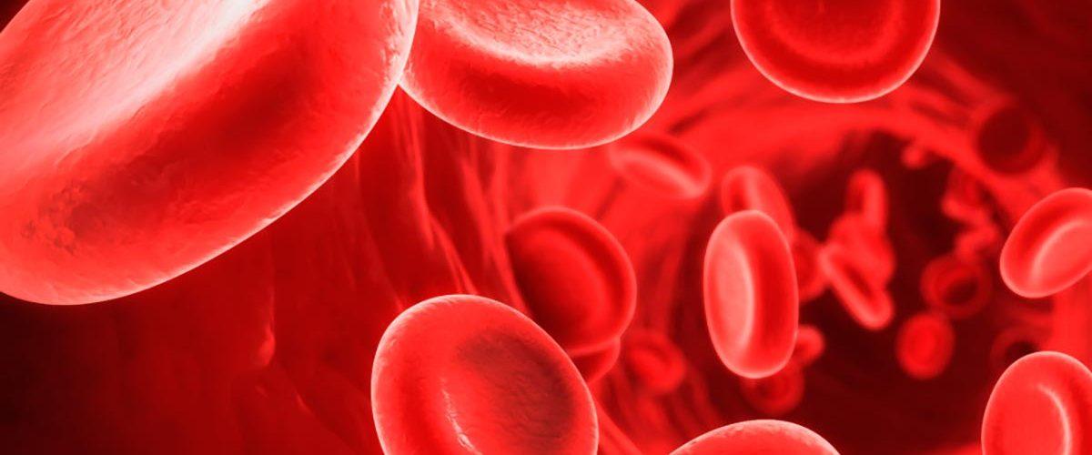 Nuovi sviluppi nella cura contro la beta talassemia