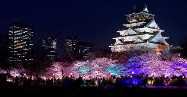 Il castello di Osaka durante l'hanami