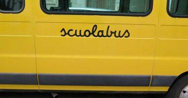 autista-eroe-prima-di-morire-salva-i-bambini-sullo-scuolabus