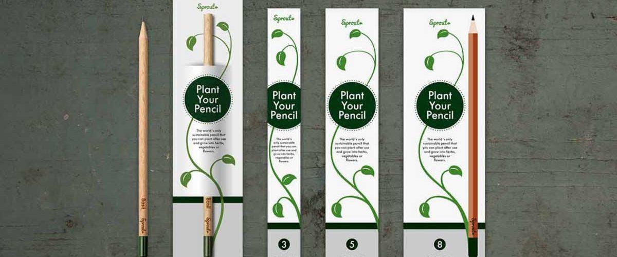 sprout-la-matita-che-quando-finisce-diventa-una-pianta