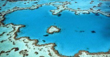 la-barriera-corallina-del-belize-e-finalmente-fuori-pericolo-di-estinzione