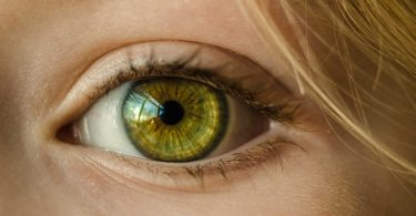 """Dietro al colore degli occhi verdi si nascondono delle particolari caratteristiche, che vanno a riflettersi sulla personalità. Sembra che persone con gli occhi verdi trasmettano ungrande senso di affidabilità, che appaiano intelligenti e particolarmente affascinanti. Ciò avviene perché la forza del colore marrone si combina perfettamente con la calma trasmessa dal colore azzurro. Sono stati condotti numerosi studi riguardo alla correlazione tra la personalità di un individuo ed il colore della sua iride. Diversi anni fa, alcuni ricercatori dell'Università di Orebro in Svezia, hanno confrontato gli occhi di 428 soggetti con le caratteristiche della loro personalità. Questo per capire se tra struttura, colore dell'iride e personalità vi fossero delle corrispondenze evidentemente visibili. """"Non è impossibile"""", pensavano. Questo perché i geni responsabili dello sviluppo dell'iride rivestono un ruolo importante nel dar vita a una parte dellobo frontaledel cervello che influenza fortemente anche i tratti della nostra personalità. Questi studi hanno rivelato che le persone con gli occhi verdi sono moltogeneroseealtruiste, sempre pronte a sacrificarsi per gli altri. Tuttavia fra i tratti della personalità vi è anche un po' dipermalosità. Le donne con gli occhi verdi spesso sono moltogelosedel loro partner. Inoltre sono particolarmentepignolee precise. Gli uomini invece amano molto mettersi in mostra, ma sono spessointelligenti. Da una ricerca pubblicata dallaImpulse Corporation di Los Angeles, condotta dal dottore Hamadi Kallel, è stato scoperto che le persone con gli occhi verdi sono molto spesso originali e creative, parecchio misteriose e autosufficienti, si arrabbiano raramente e sono solitamente molto imprevedibili. Al contrario di quanto si possa pensare, nascere con gli occhi di colore verde è una rarità: solo il 2% della popolazione li possiede. Gli occhi verdi sono infatti il prodotto di una scarsa quantità di melanina. Probabilmente sono frutto dell'interazione de"""