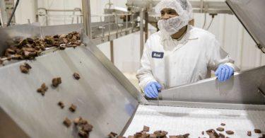Greyston Bakery: la pasticceria che assume senza curriculum