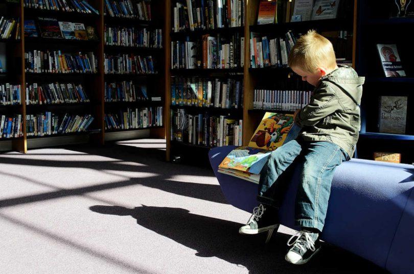 Societ crescere in una casa piena di libri migliora le - Casa piena di zanzare ...
