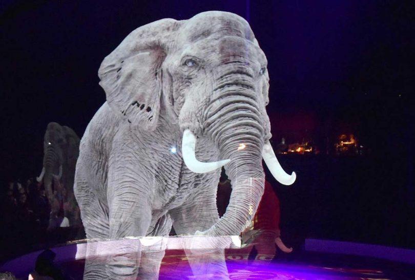 Gli animali olografici del Roncalli Circus