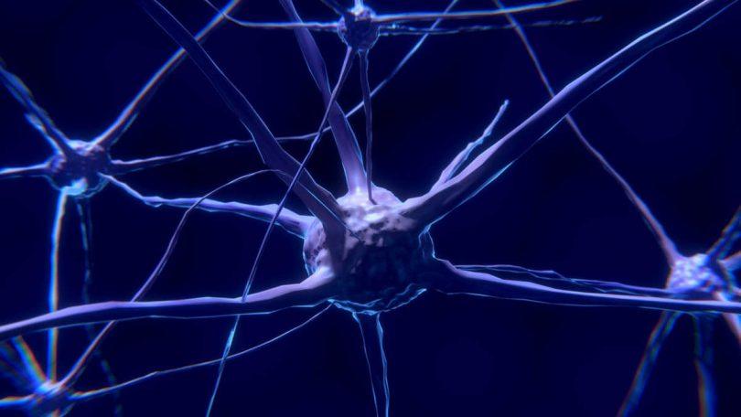Il nostro sistema nervoso cura da solo traumi e ossessioni