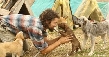Ragazzo turco dedica la sua vita agli animali