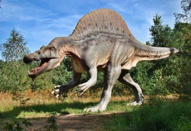 ritrovati-fossili-di-un-dinosauro-finora-sconosciuto