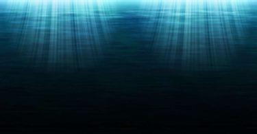 Jaich Maa: un nuovo ecosistema in fondo all'oceano