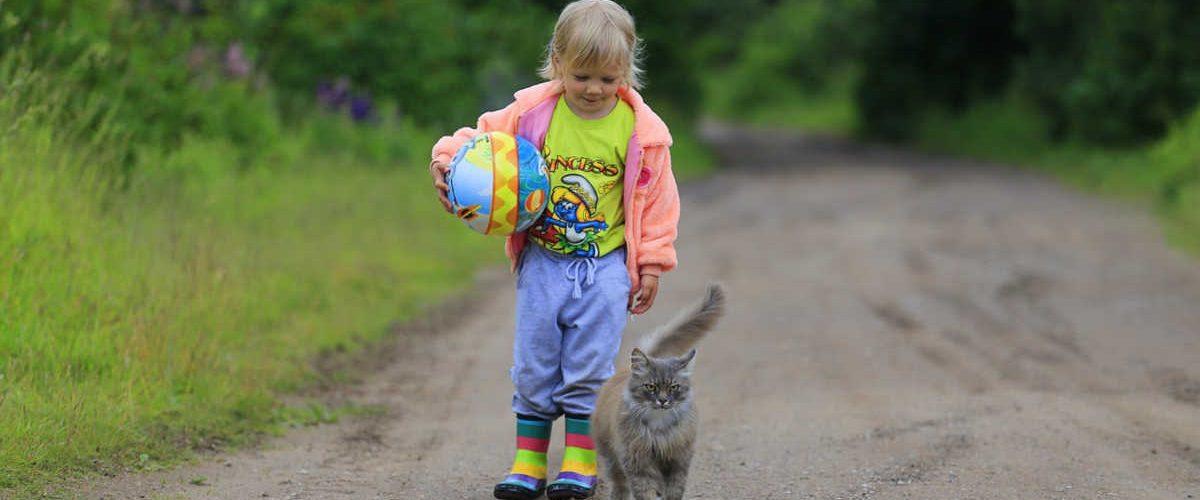 Gatto eroe salva il suo baby padrone
